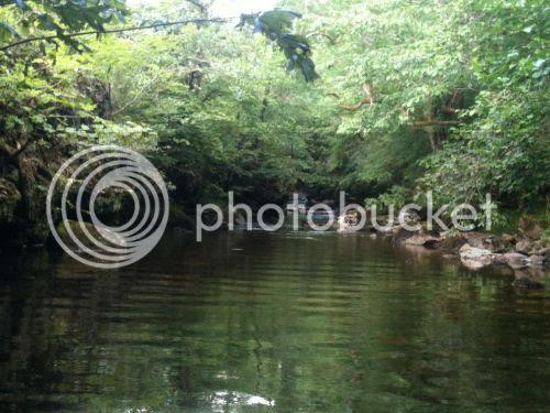 photo 1150910_200928440068958_721337987_n_zpsd75dd59f.jpg