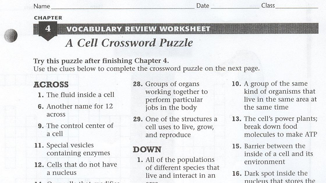 30 Cell Crossword Puzzle Worksheet - Worksheet Resource Plans