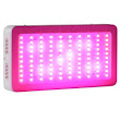 Galaxyhydro 300W LED Grow Light Review - Best Galaxyhydro Lights