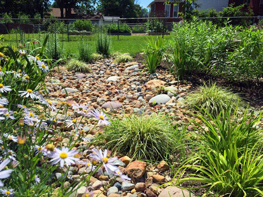 Apply for a Rainscaping Grant, for $3,000 Towards Your Project!