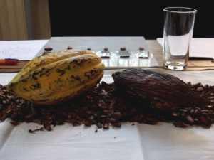 20 chilangos fueron convocados para probar el nuevo sabor