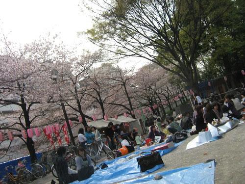 People picnicking at Edogawa Park