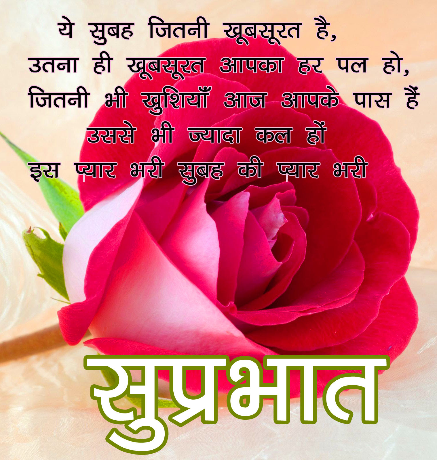 Flower Good morning  Images With Hindi Quotes