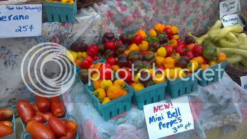 Peppers at Haile Plantation Farmer's Market
