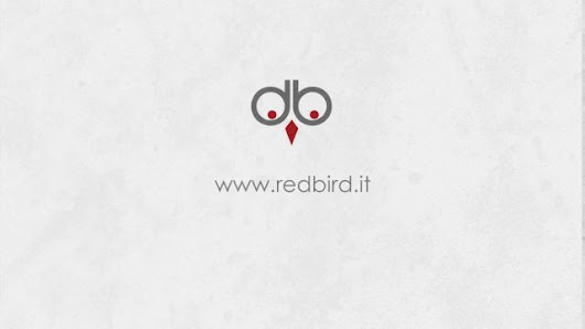 Redbird Studio video Promo