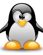 Il simbolo di Linux
