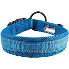Truelove Reflective Dog Collar with Plastic Clip-in Buckle, High-grade Soft Padded Nylon Webbing, No Choke Basic Collars (XS, Blue)