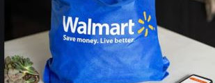 Walmart Delivery Unlimited Logo