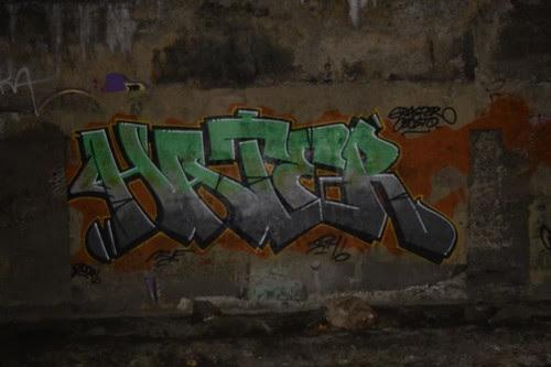 IMGP1061rd
