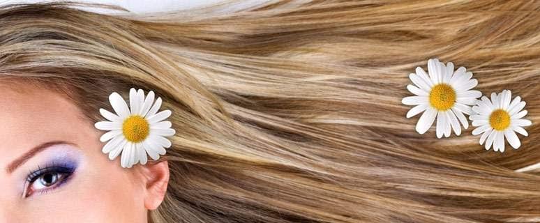 Capelli grassi e unti cause e rimedi Istituto Svizzero Dermes - come risolvere il problema dei capelli grassi