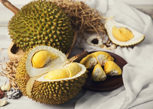 Durian MODERE - MODERE