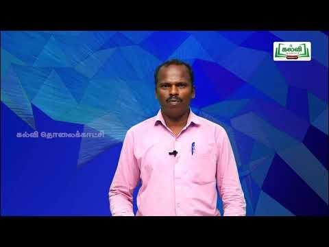 10th Social Economics Unit 5 தமிழ்நாட்டில் தொழில்துறை தொகுப்புகள்