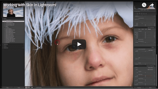 Lightroom and Skin - Seim Effects Photo Tools