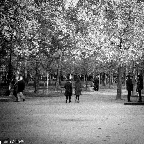 22101109 by Jean-Fabien - photo & life™