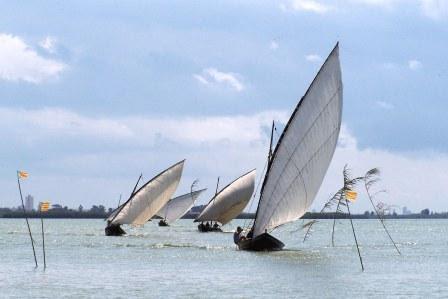 Numerosas embarcaciones de diferentes tamaños surcaron como antaño las aguas de la Albufera. Foto. EPDA.