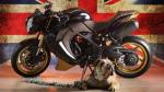 Triumph Bulldog