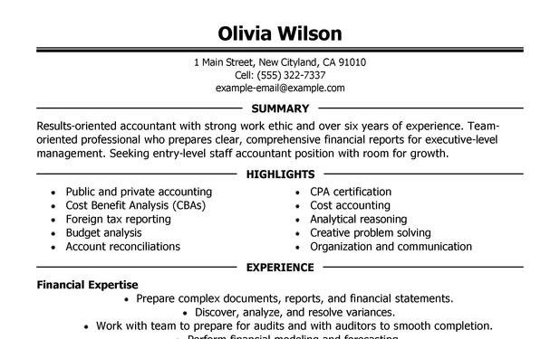 Resume Summary Accounting