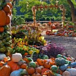 The awesome pumpkin villages of the US