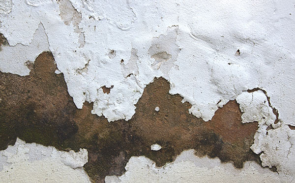 What Kind Of Damp Is Affecting My Home? - Which?