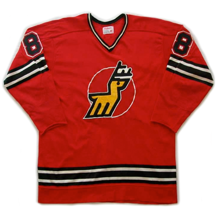 Michigan Stags jersey