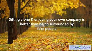 Enjoy My Own Company Quotes Video
