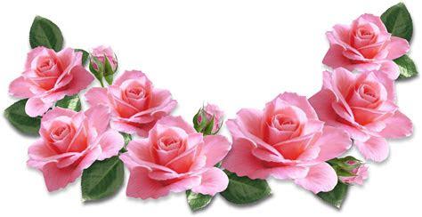 pin oleh bejo sutejo  bunga mawar kuning bunga  mawar