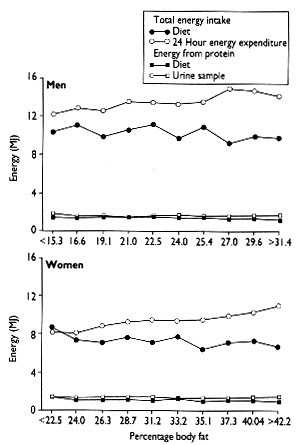 relation between age and body fat percentage