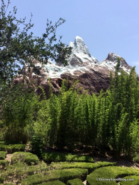 View of Everest in Animal Kingdom's Asia