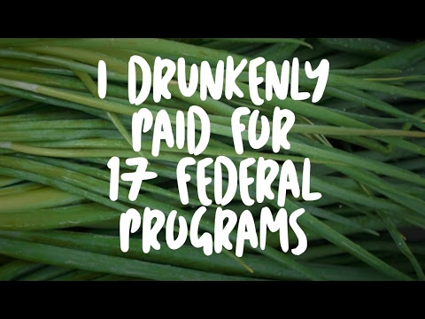 I Drunkenly Paid For 17 Federal Programs - YouTube