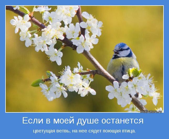 цветущая ветвь, на нее сядет поющая птица.