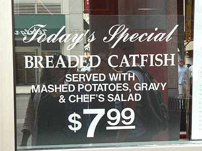 breaded catfish.jpg