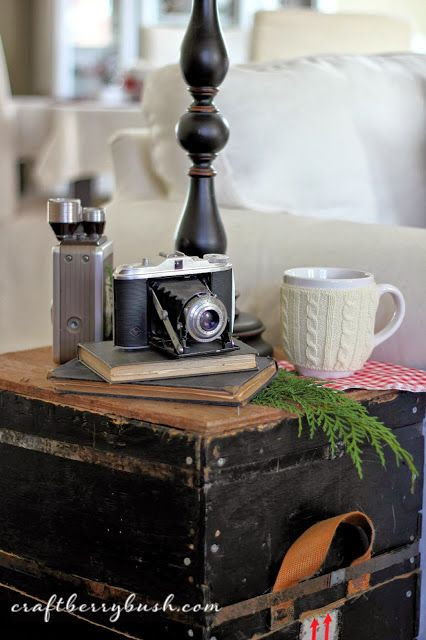 Cute display of vintage cameras for winter