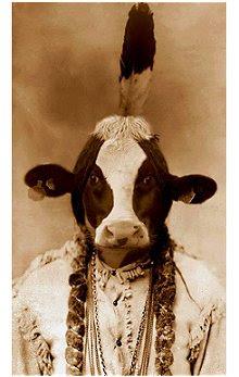 Vaca Tribo