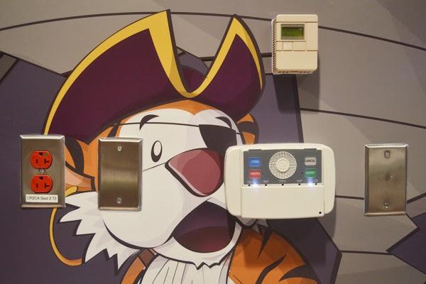 7 tiger pirate