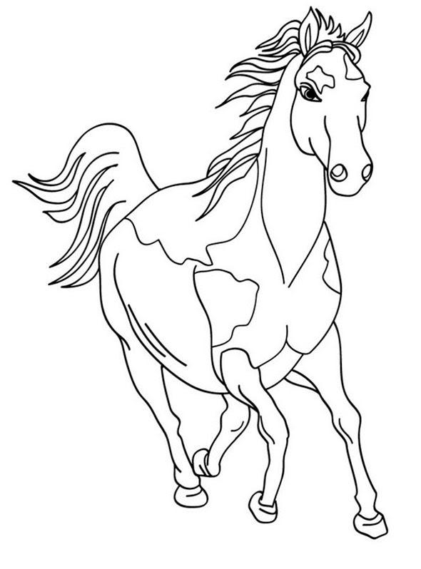 Ausmalbilder Pferde 20 Ausmalbilder Zum Ausdrucken