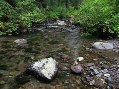 Nickel Creek (Snapshot)