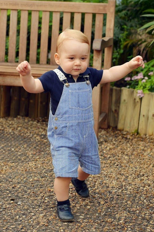 Thoughts from The Royal Baby Prince George - Best Diaper Bags 2015 - Reviews & Guide