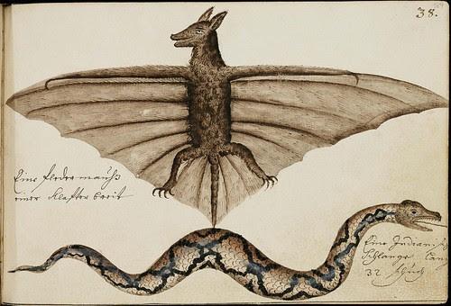 bat and snake