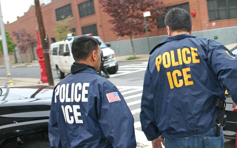 Image result for homeland security ICE