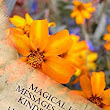 Amazon.com: Magical Love Messages Between Kindred Spirits eBook: Heather Wright: Kindle Store