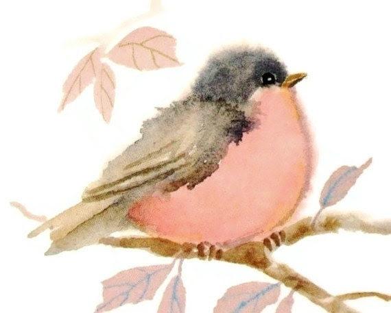 Pastel Pink Bird Watercolor Painting Print - judithbelloriginals