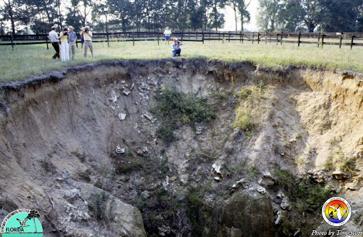 Sinkholes vs. Catastrophic Ground Cover Collapse