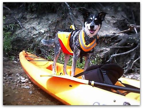 I'm a kayaker