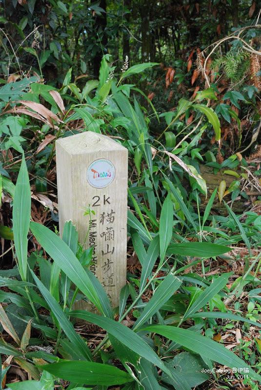 【南投】阿薩姆紅茶的故鄉。貓蘭山步道之旅DSC_1779