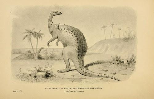 An Armoured Dinosaur, Scelidosaurus harrisoni