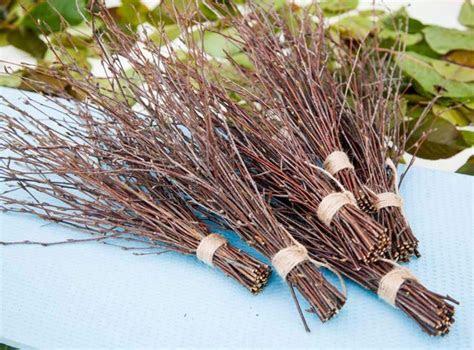 6 Bundles Of Birch Twigs, Birch Bark Wedding Decor, Birch