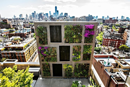 Luxury penthouse perk: a lavish garden