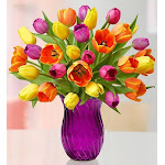 Flower Delivery by 1-800 Flowers Assorted Tulips 30 Stems with Purple Vase Flowers, Medium