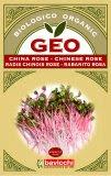 Germogli di Chinese Rose