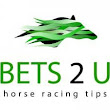 Horse Racing Tipster Reviews